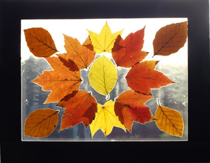 Leaf-Art1.jpg