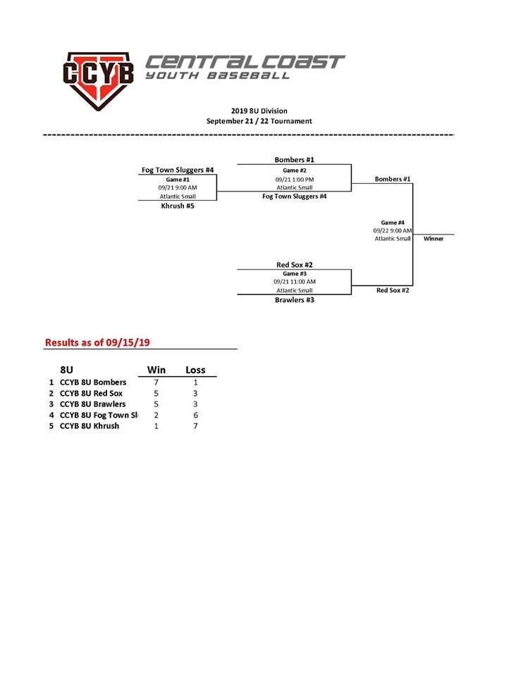 baseball 2019 season tournament 8U.JPG