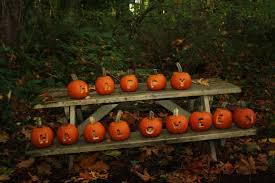 bg_pumpkin_walk.jpg
