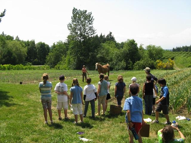 Kids,Betsy,Horse copy.jpg
