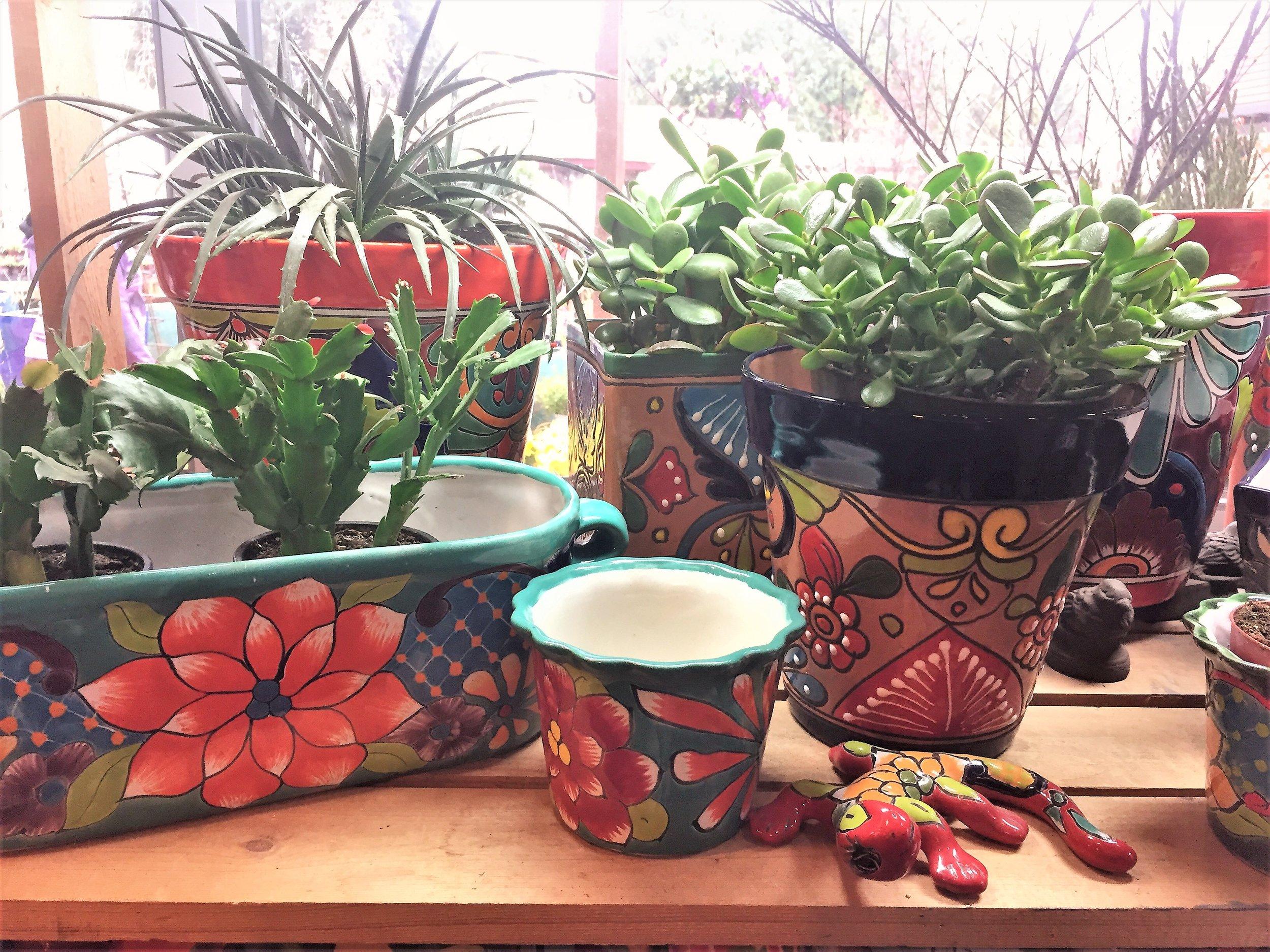 pots in nursery.jpeg