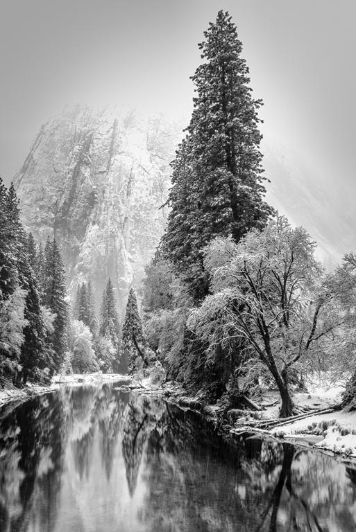 Dee Overturf-Merced in Winter-CCC.jpg