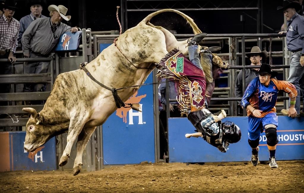 Cowboy Down! Clown on the Way!,Butch Spielman, Louisiana PS, 1st HM