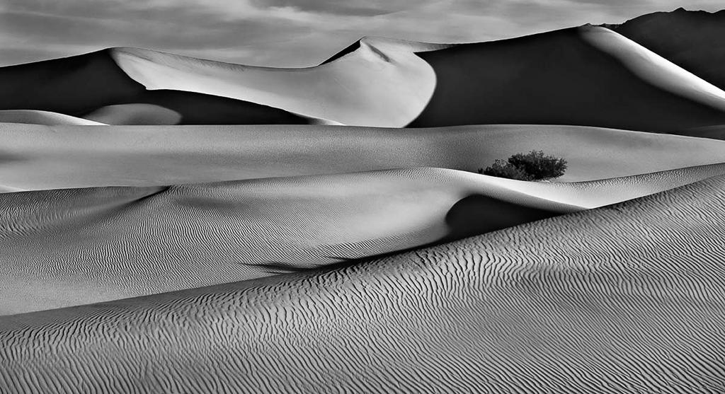 Deserted Desert, Bill Hayes, Dallas CC, 1st HM