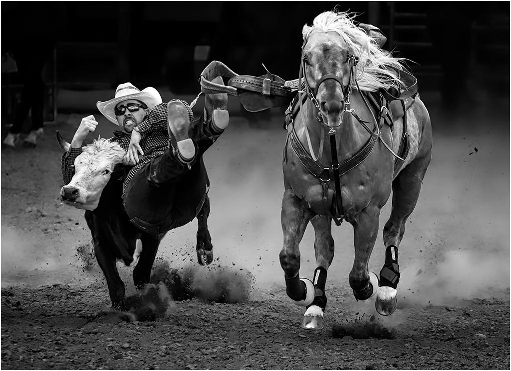 By The Horns, Inge Vautrin, Oklahoma CC, 1st Place