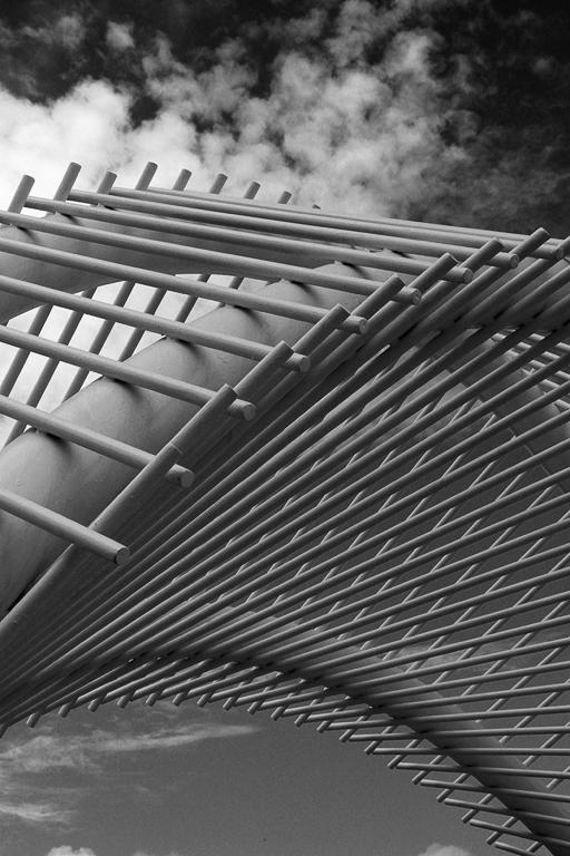 Ladder to the Sky, Steve Hawiszczak, Dallas CC, 2nd HM