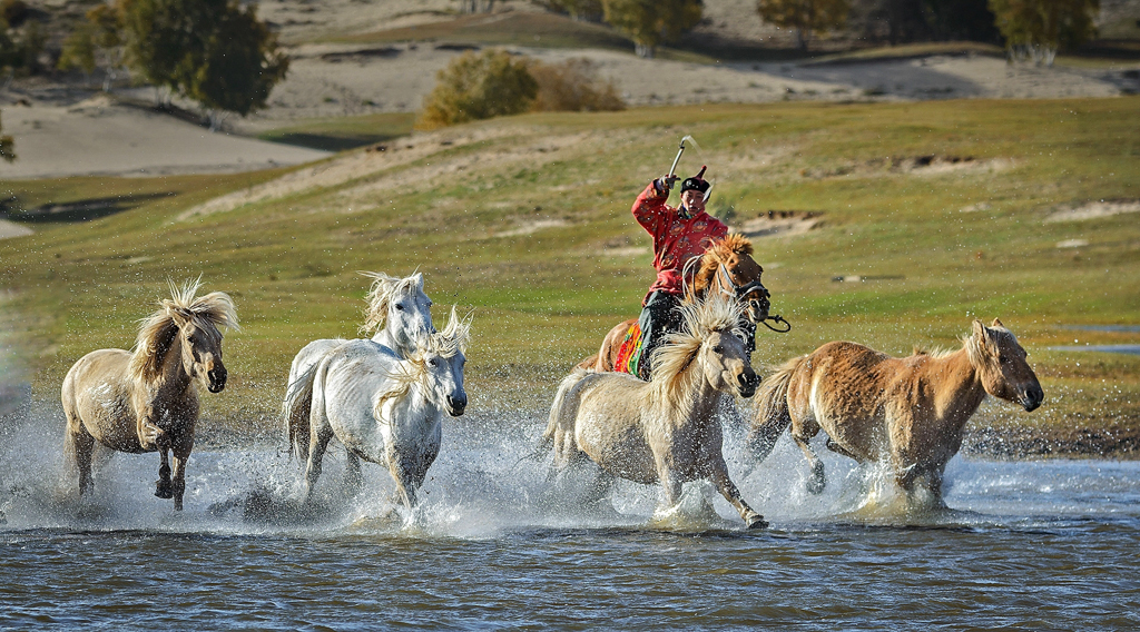 Running Horses in Mongolia, Ron Lin, Plano PC, 1st HM