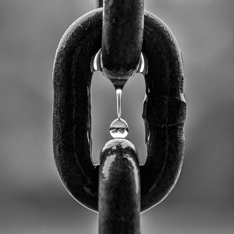 Chain Link in the Rain, Tammie Simon, Lafayette Photographic Society, Second Place