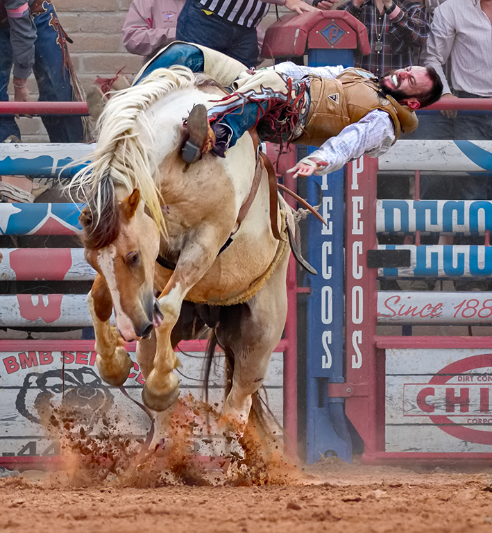 Straining to Hold On, Tom Savage, Cowtown Camera Club, First Place