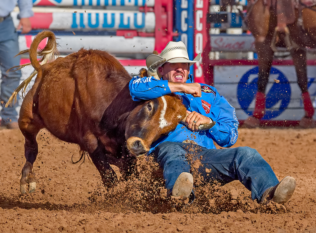 Gritting His Teeth, Tom Savage, Cowtown Camera Club, Second Place