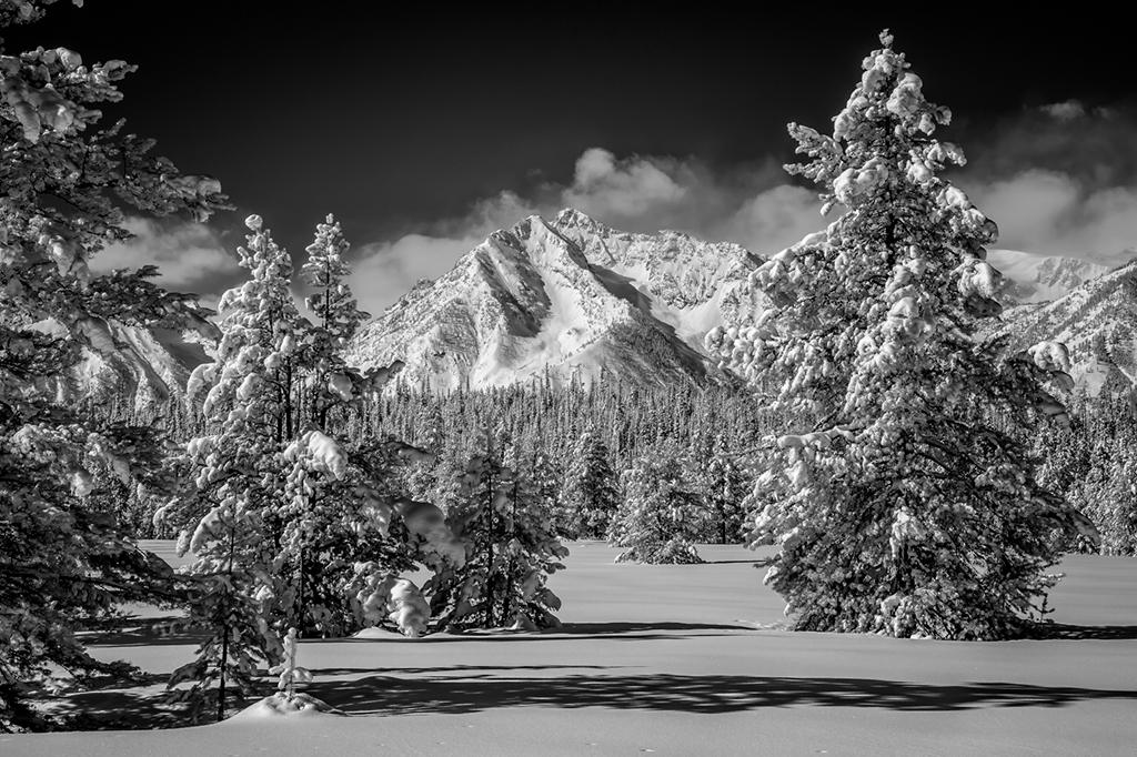 Winter Wonderland, Ron Shue, Cowtown CC, 3rd Place