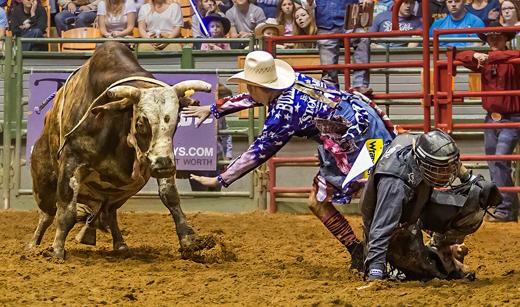 Stop Bull, Tom Savage,Cowtown CC, 2nd