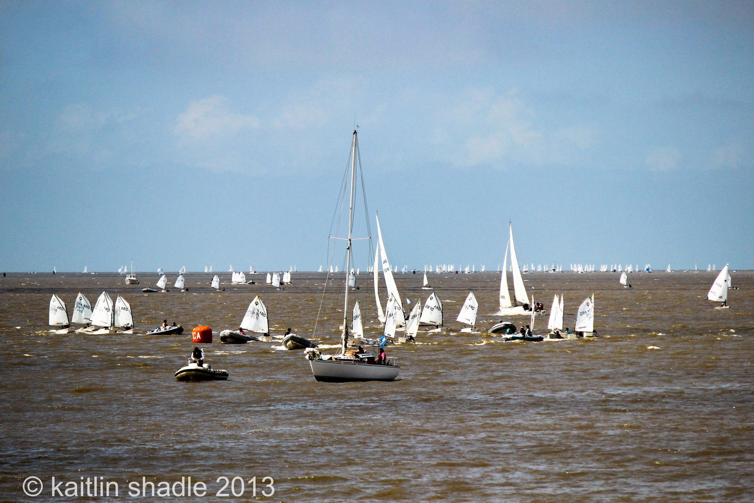 Sail Boats Everywhere