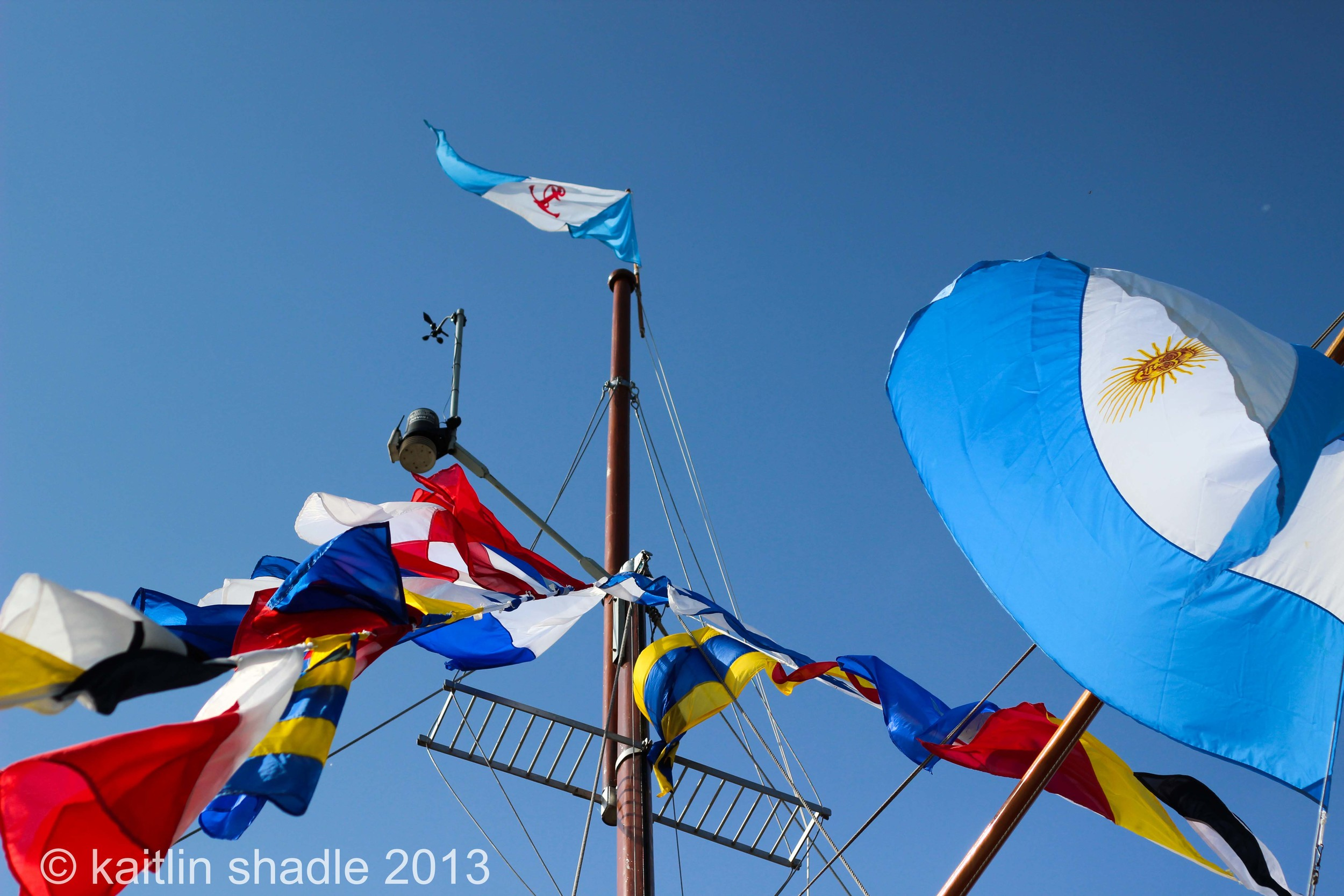 Argentine Flags