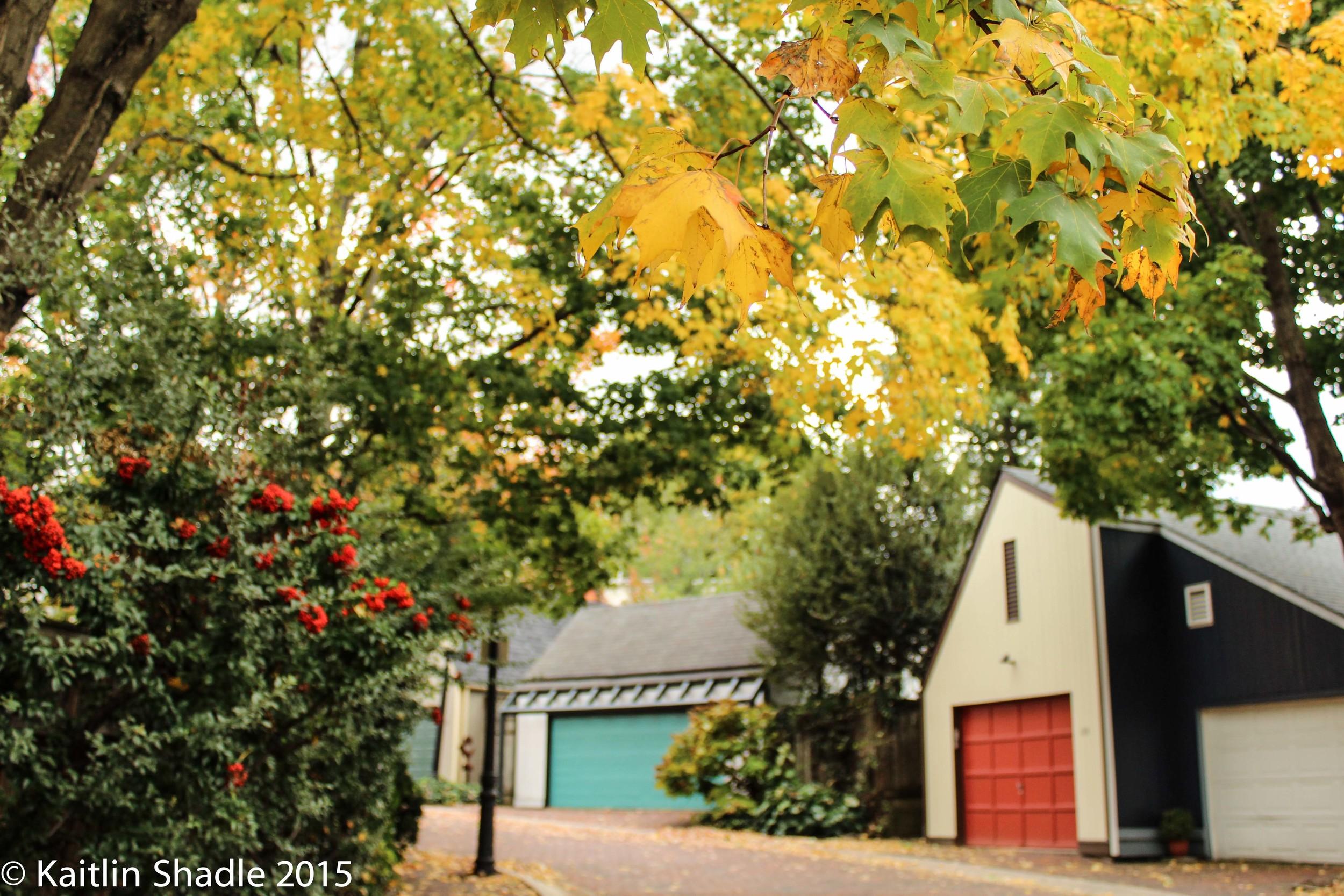 Vine Street Alleyway