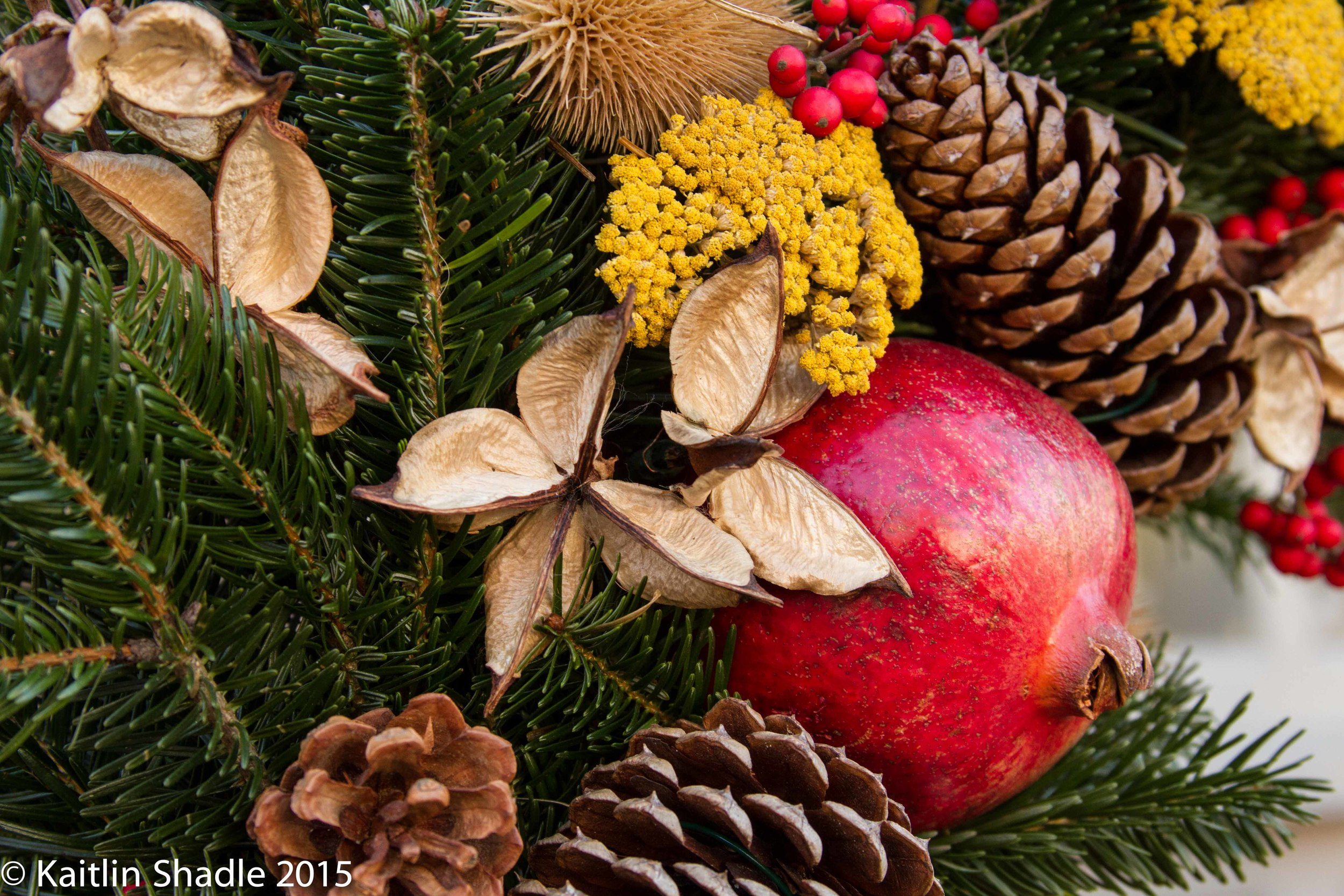 Pinecones and Pomegranate