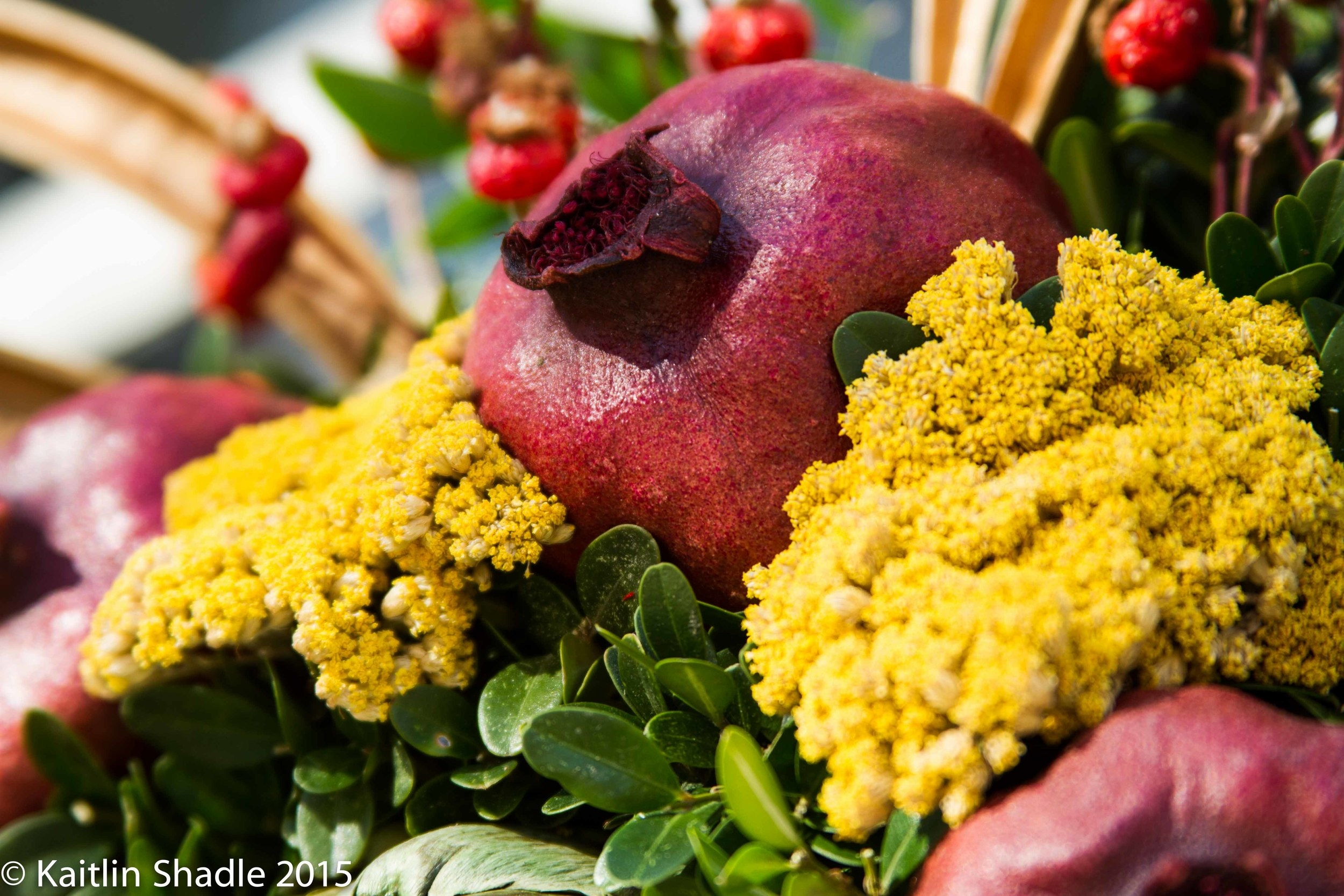 Pomegranate and Yellow