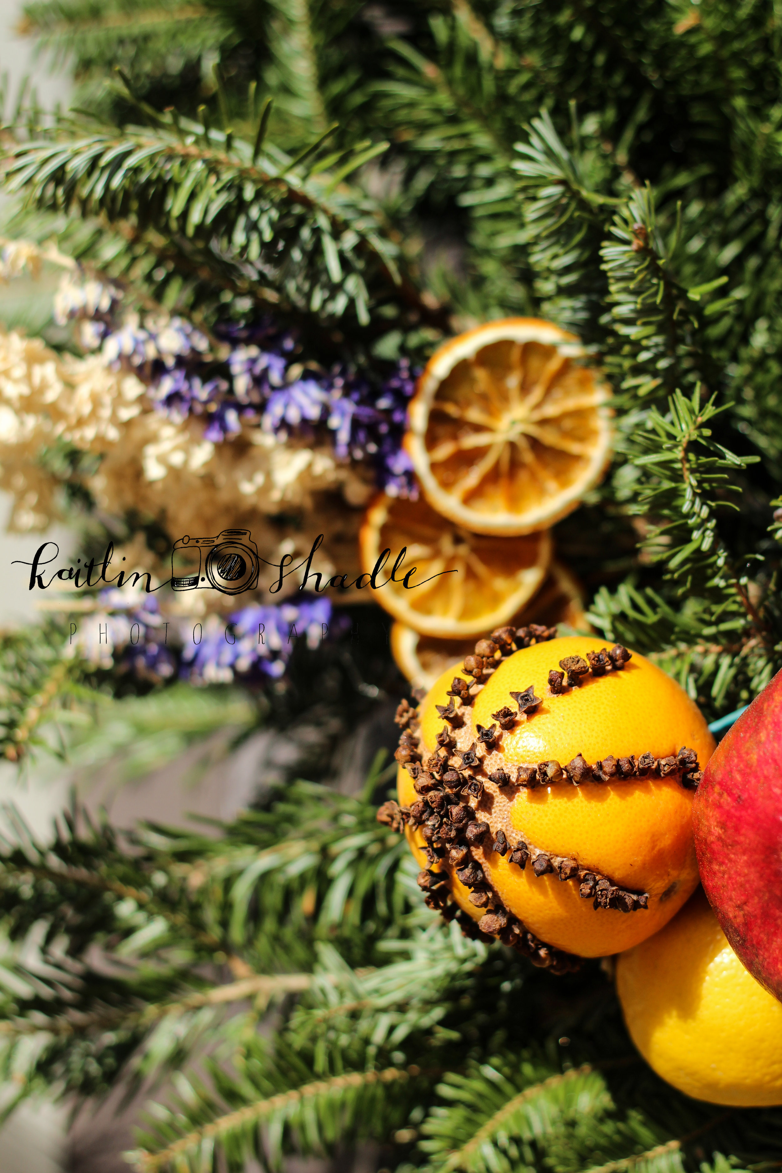 Cloves and Oranges