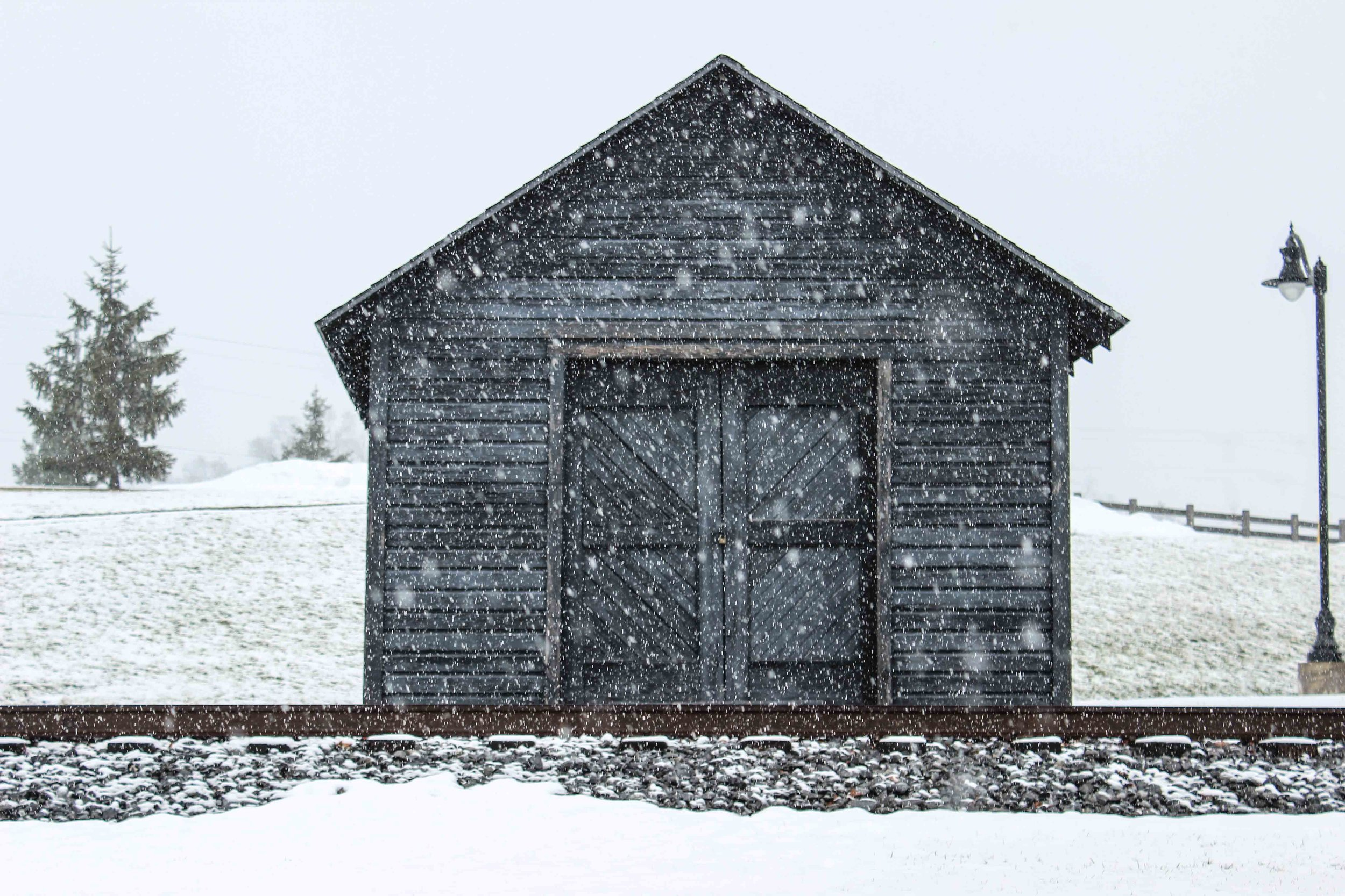 Shed and Snow