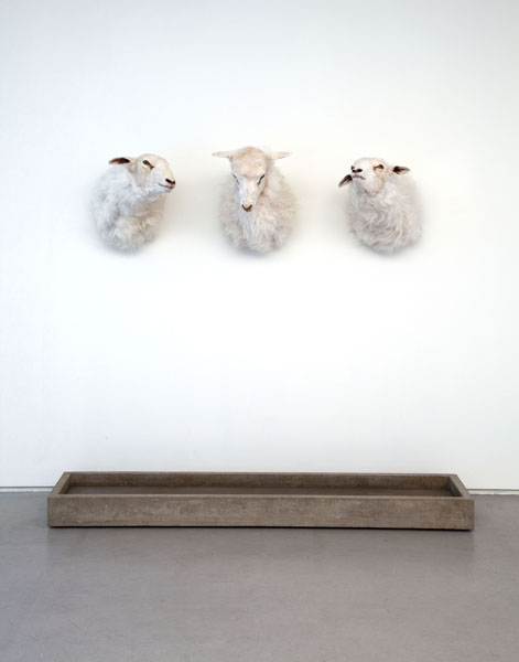 Cold Hands, Warm Heart, 2009. mixed media, water pump, water, taxidermy sheep
