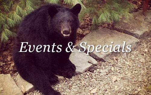 events&specials.png