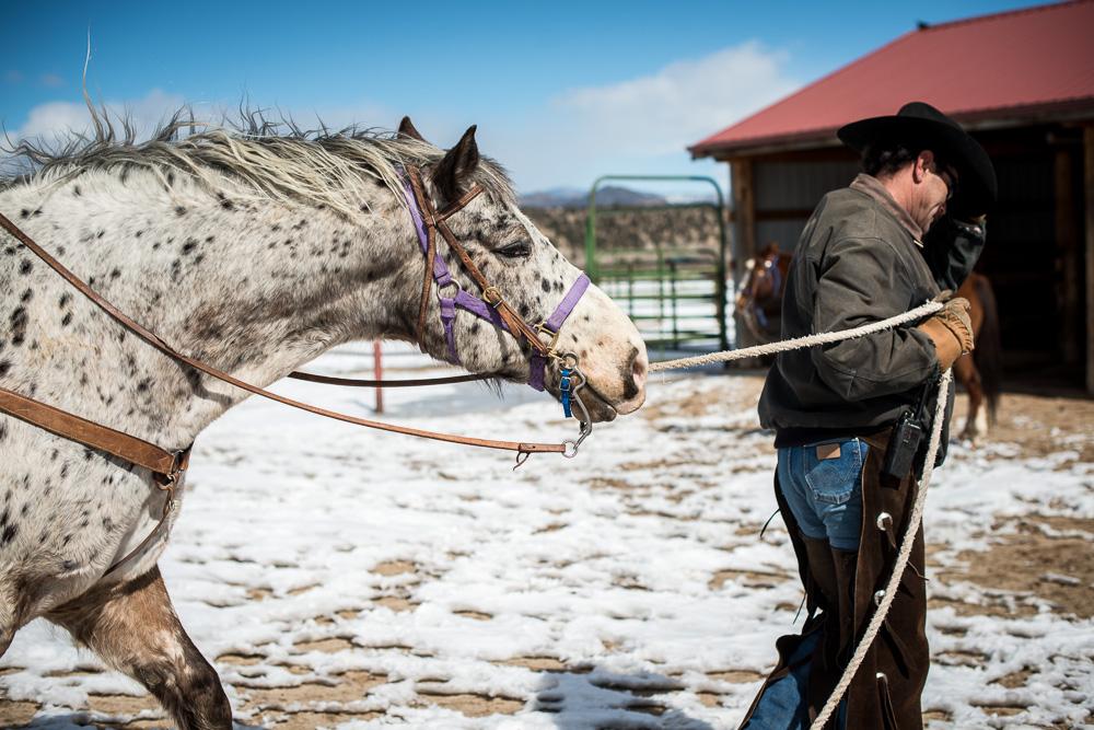 Colorado 2013 Horseback Ride Blog Post-9.jpg