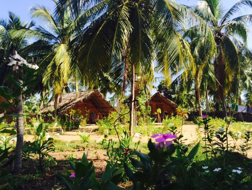 Wooden cabanas in kalpitiya