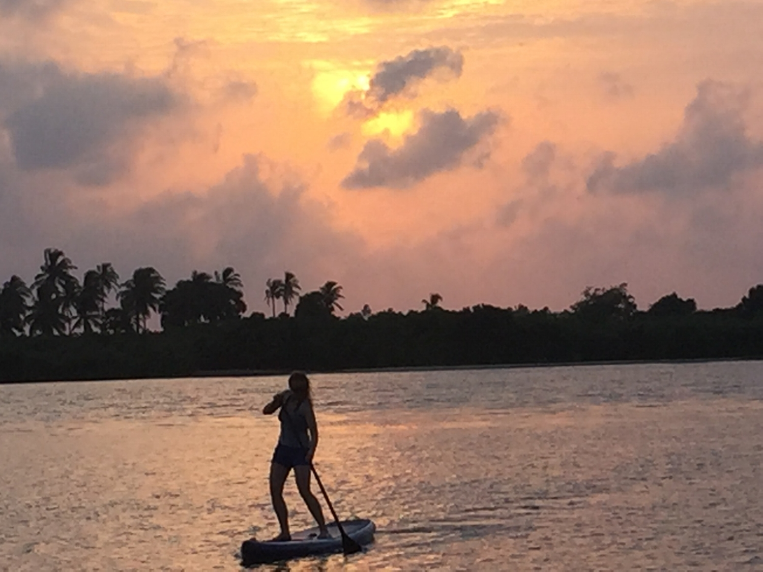 enjoy a SUP ride during the sunset