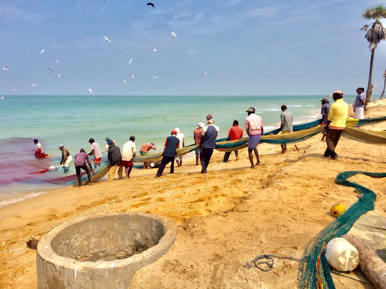 Kalpitiya fishing