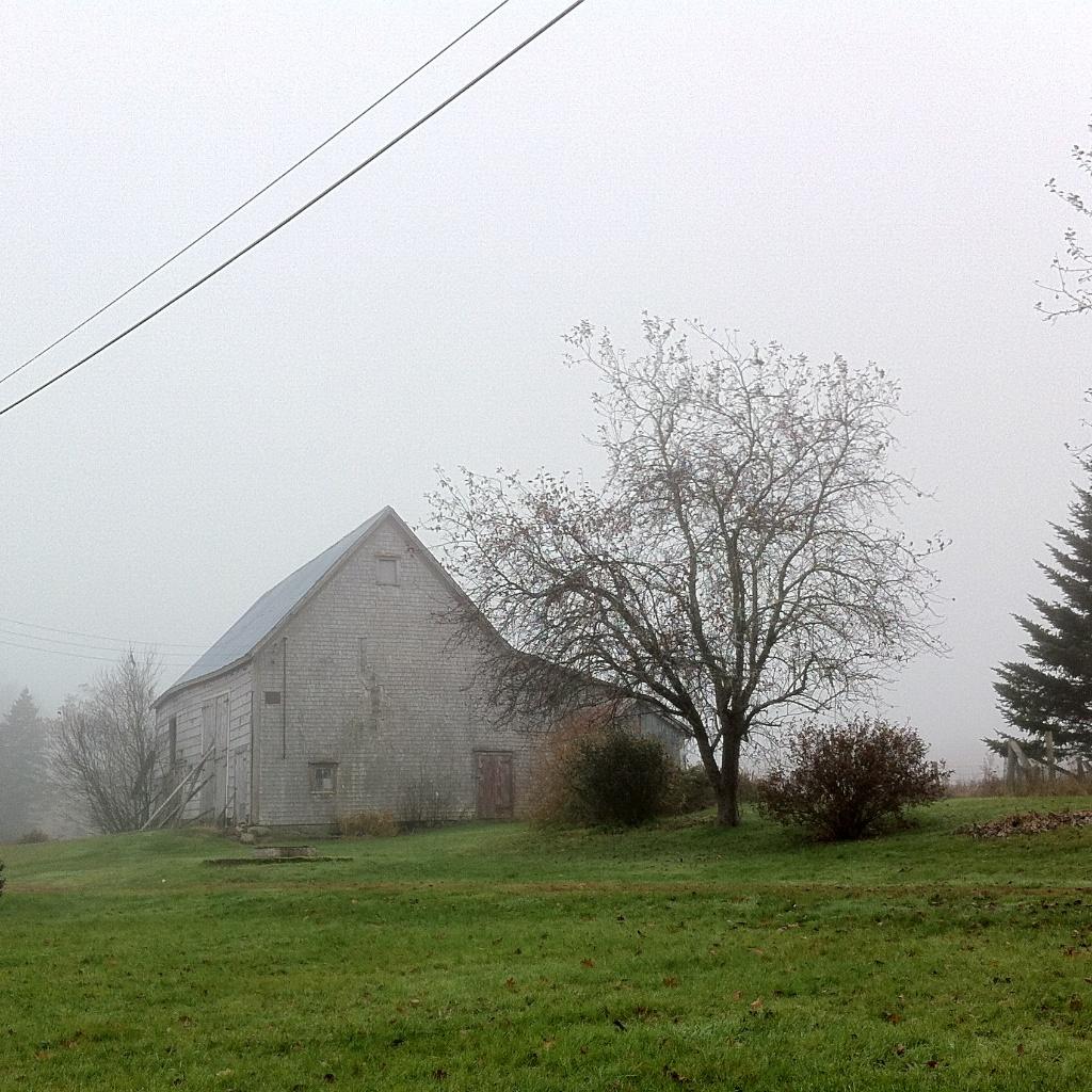 Barnaday Photo 12.jpg