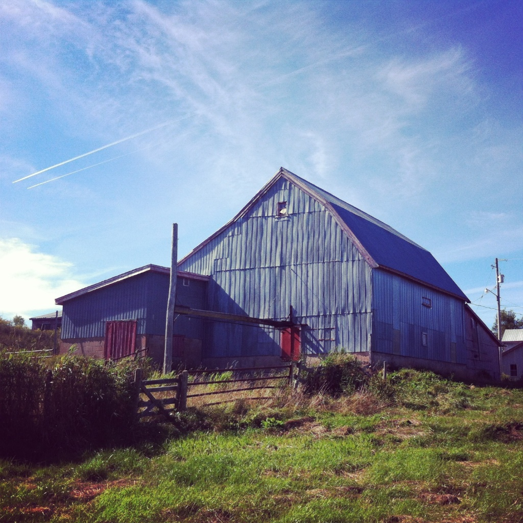 Barnaday Photo 56.jpg