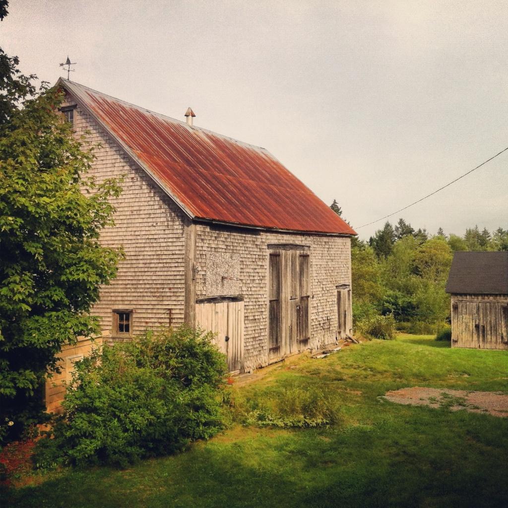 Barnaday Photo 90.jpg
