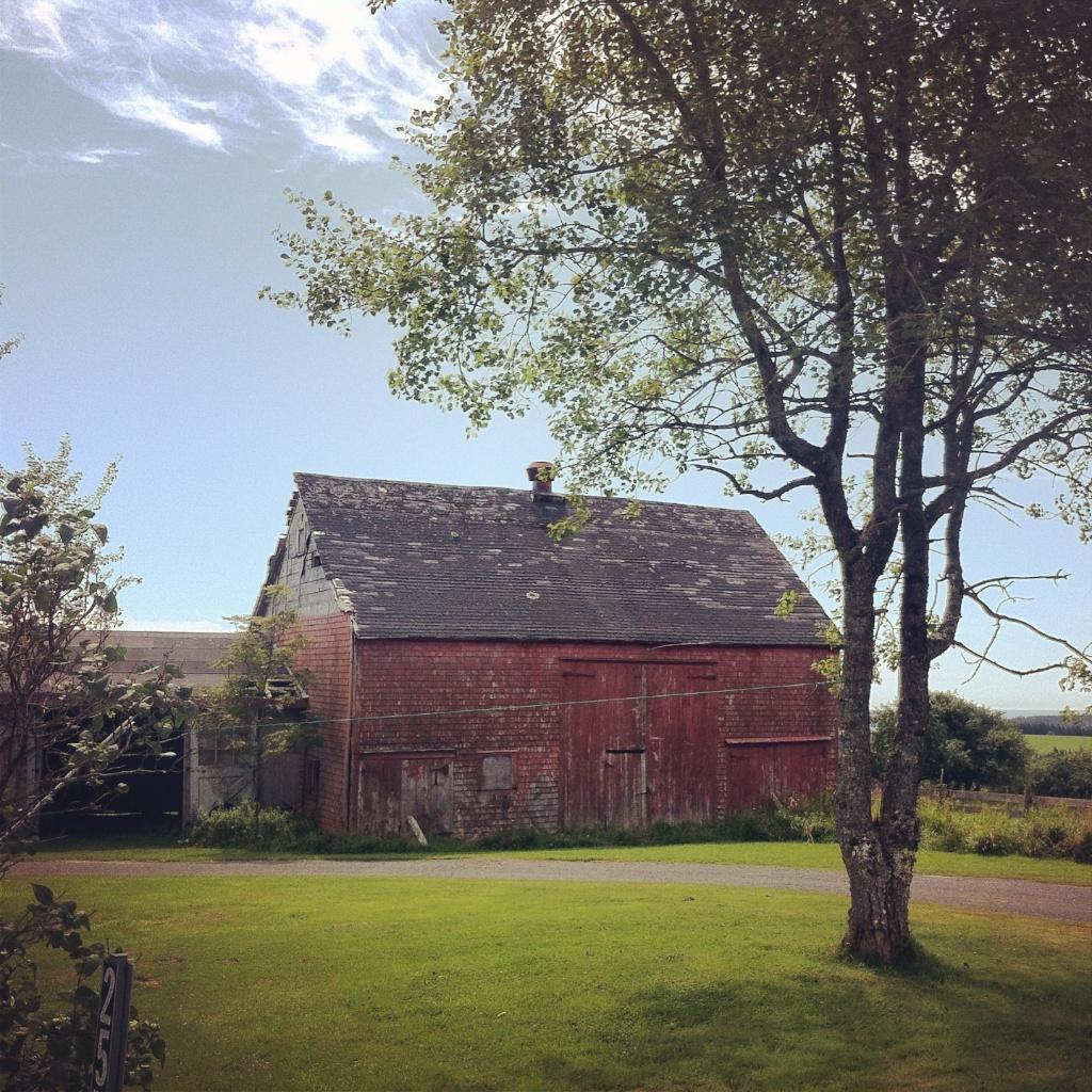 Barnaday Photo 95.jpg
