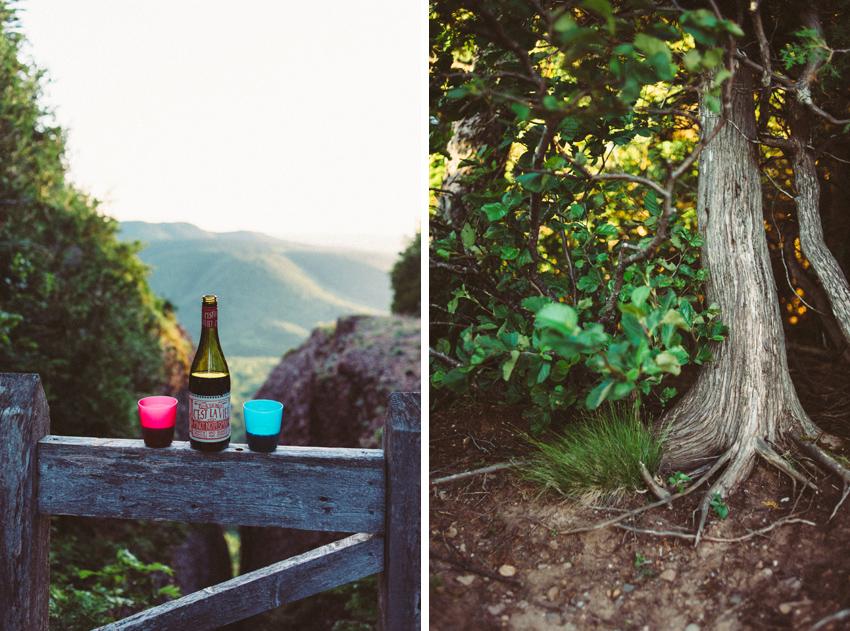 gaspesie-quebec-canada-percé-la-grande-crevasse-madame-chauvin-vue-photo-c'est-la-vie-vin-arbre-mont-blanc