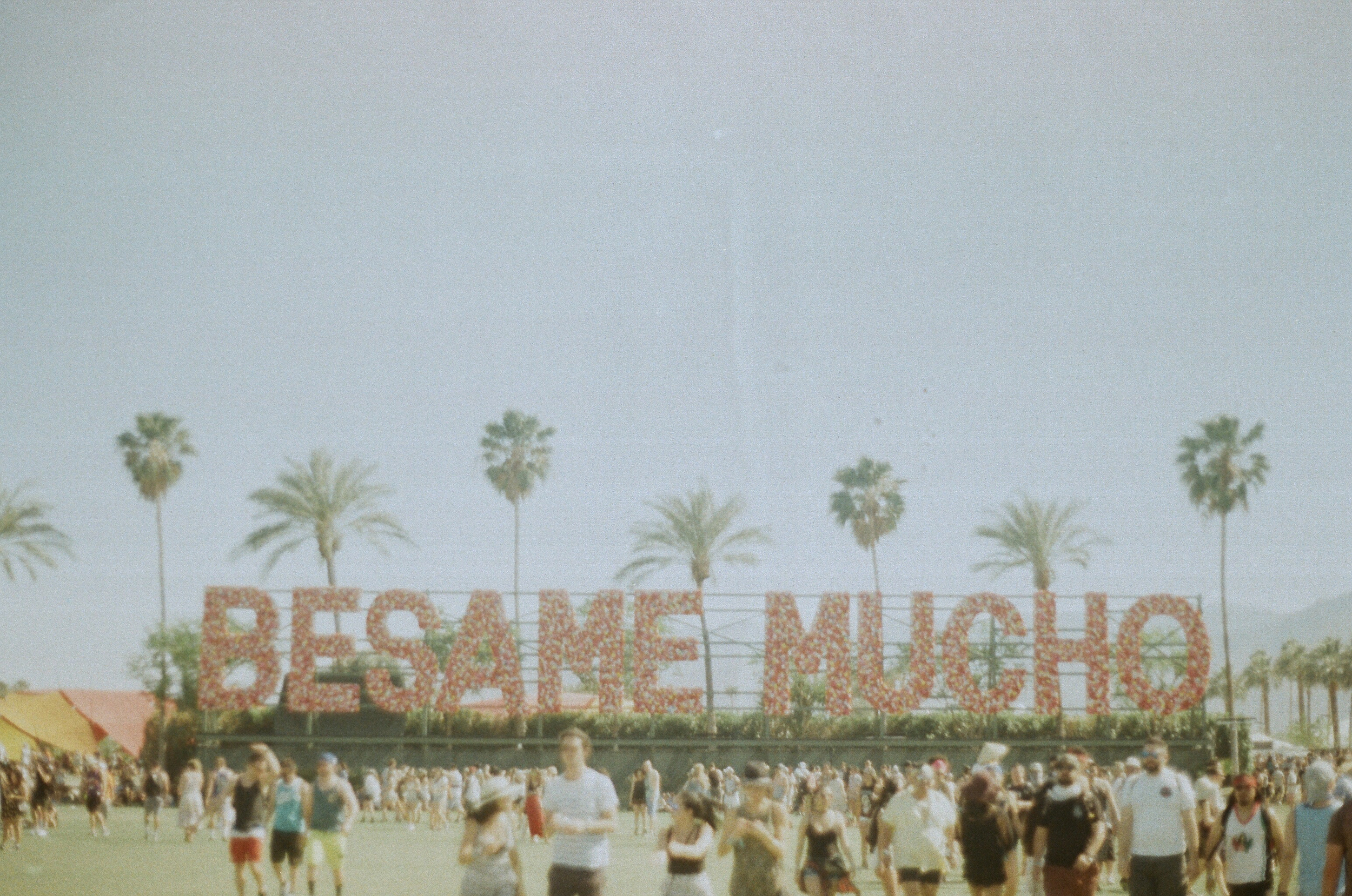 Coachella FILM_web-65950010.jpg