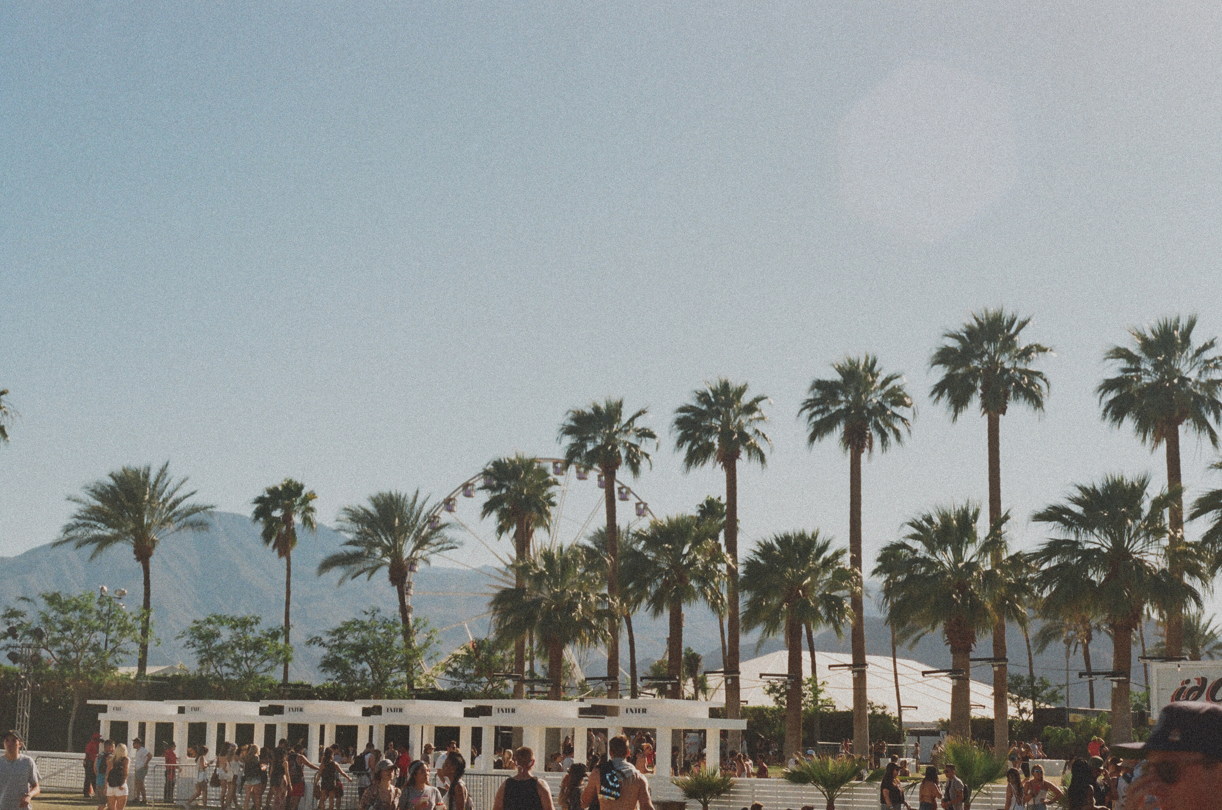 Coachella FILM_web-65950035.jpg
