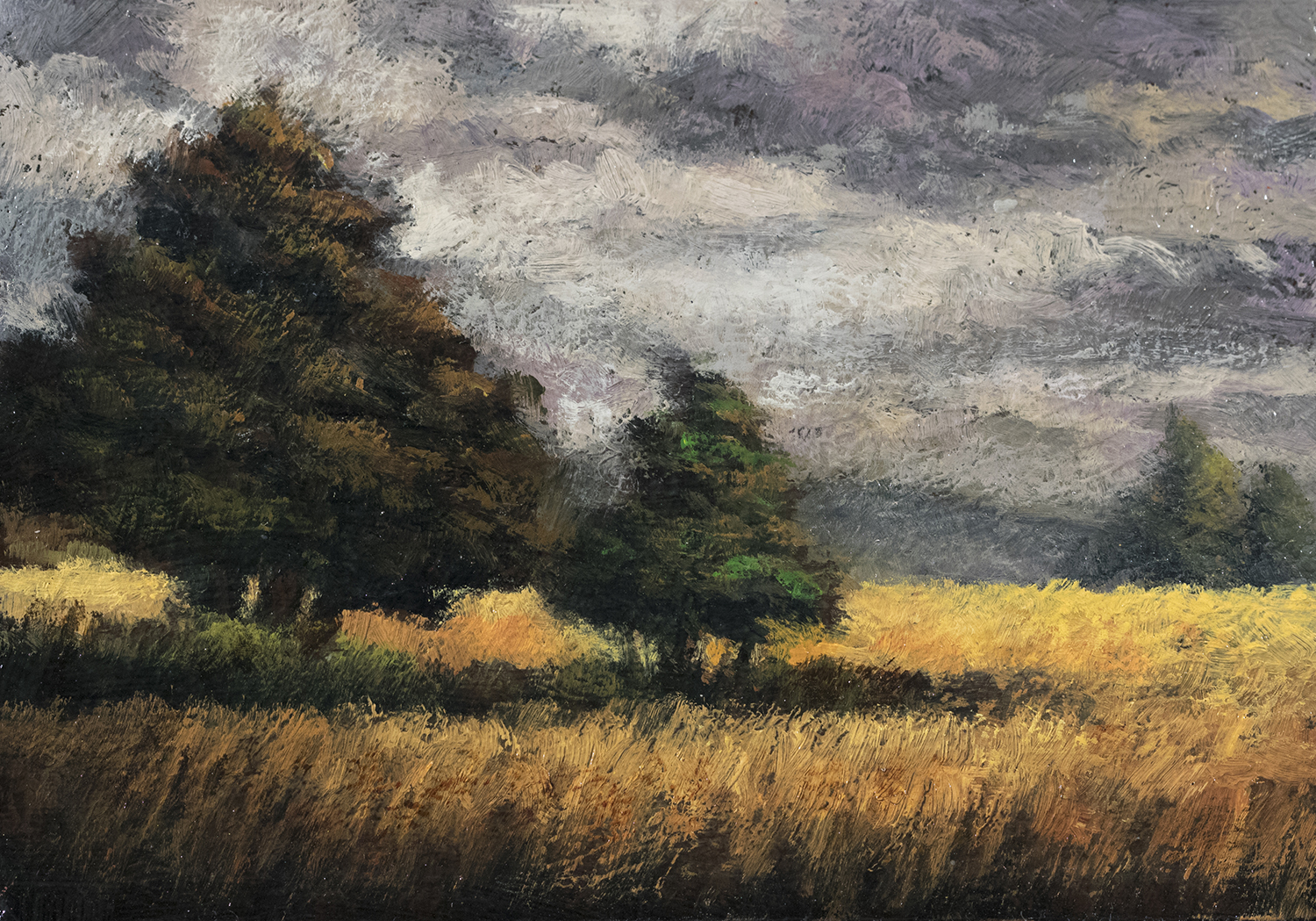 In the Meadow 3½x5 by M Francis McCarthy, Oil on Wood Panel
