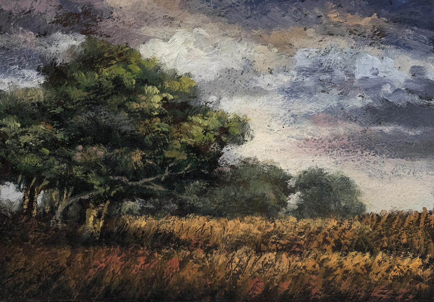 Summer Meadow 3½x5 by M Francis McCarthy, Oil on Wood Panel