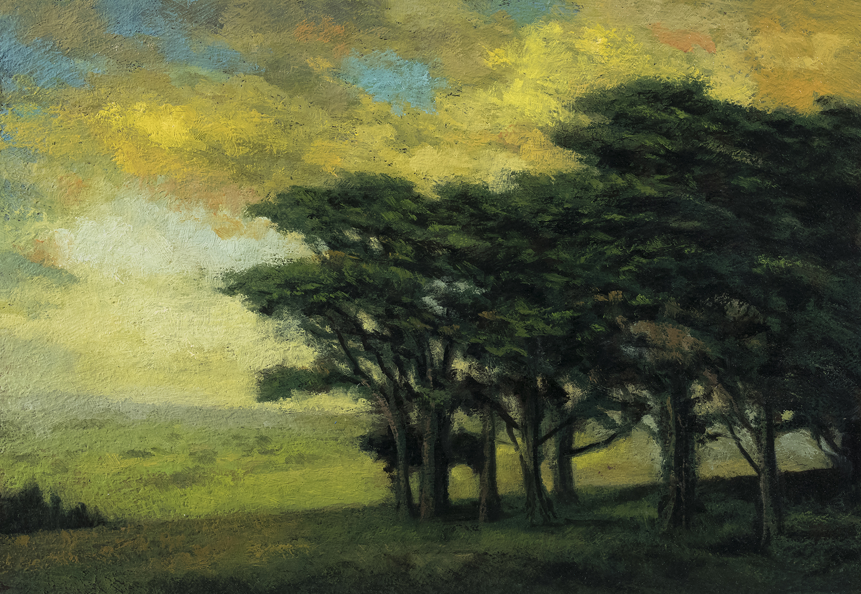 Trees over the Valley 7x10 by M Francis McCarthy, Oil on Wood Panel