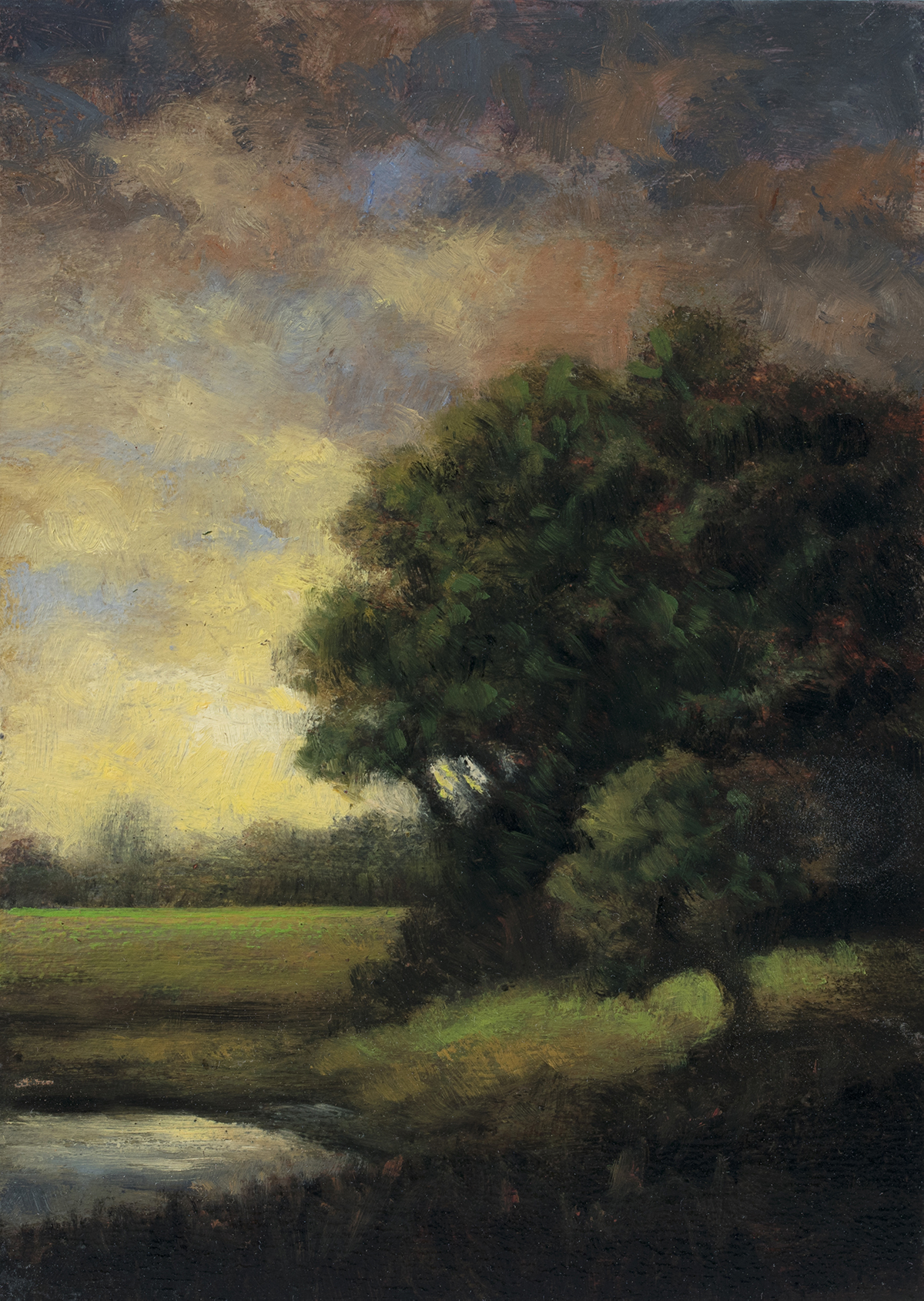 Early Spring by M Francis McCarthy - 5x7 Oil on Wood Panel