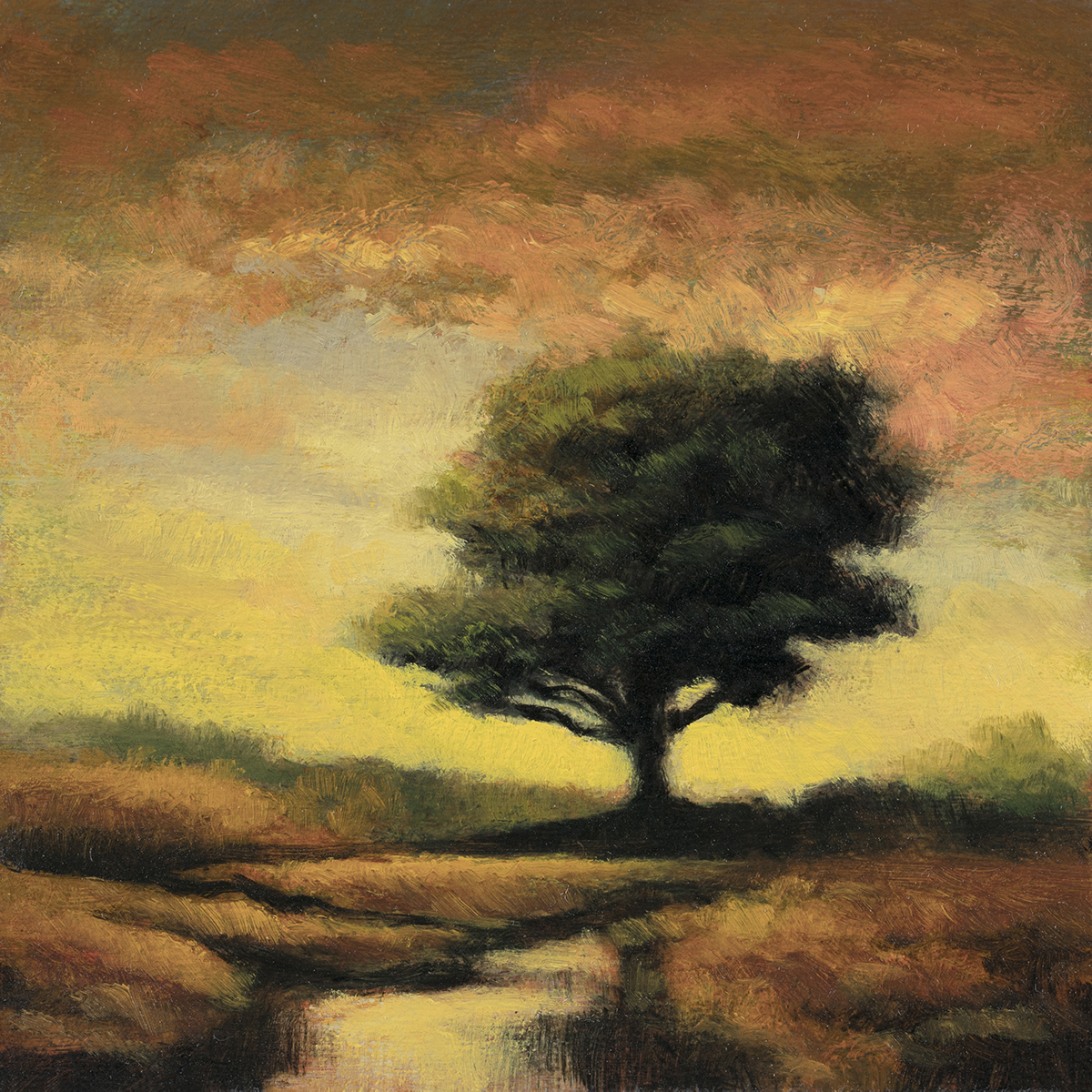 Morning Light by M Francis McCarthy - 5x7 Oil on Wood Panel
