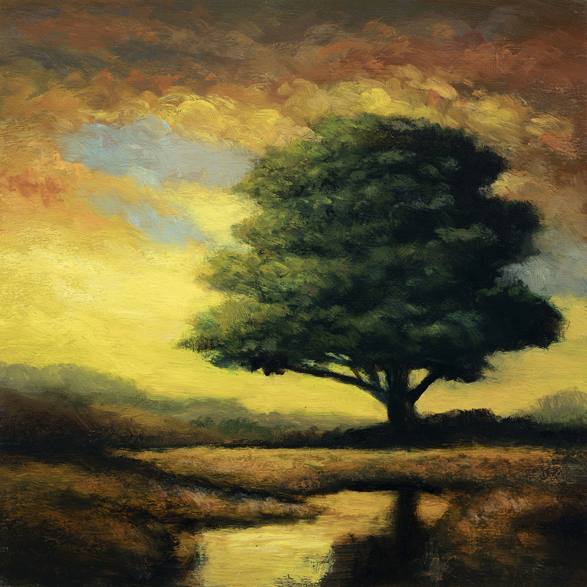 Morning Light by M Francis McCarthy - 8x8 Oil on Wood Panel