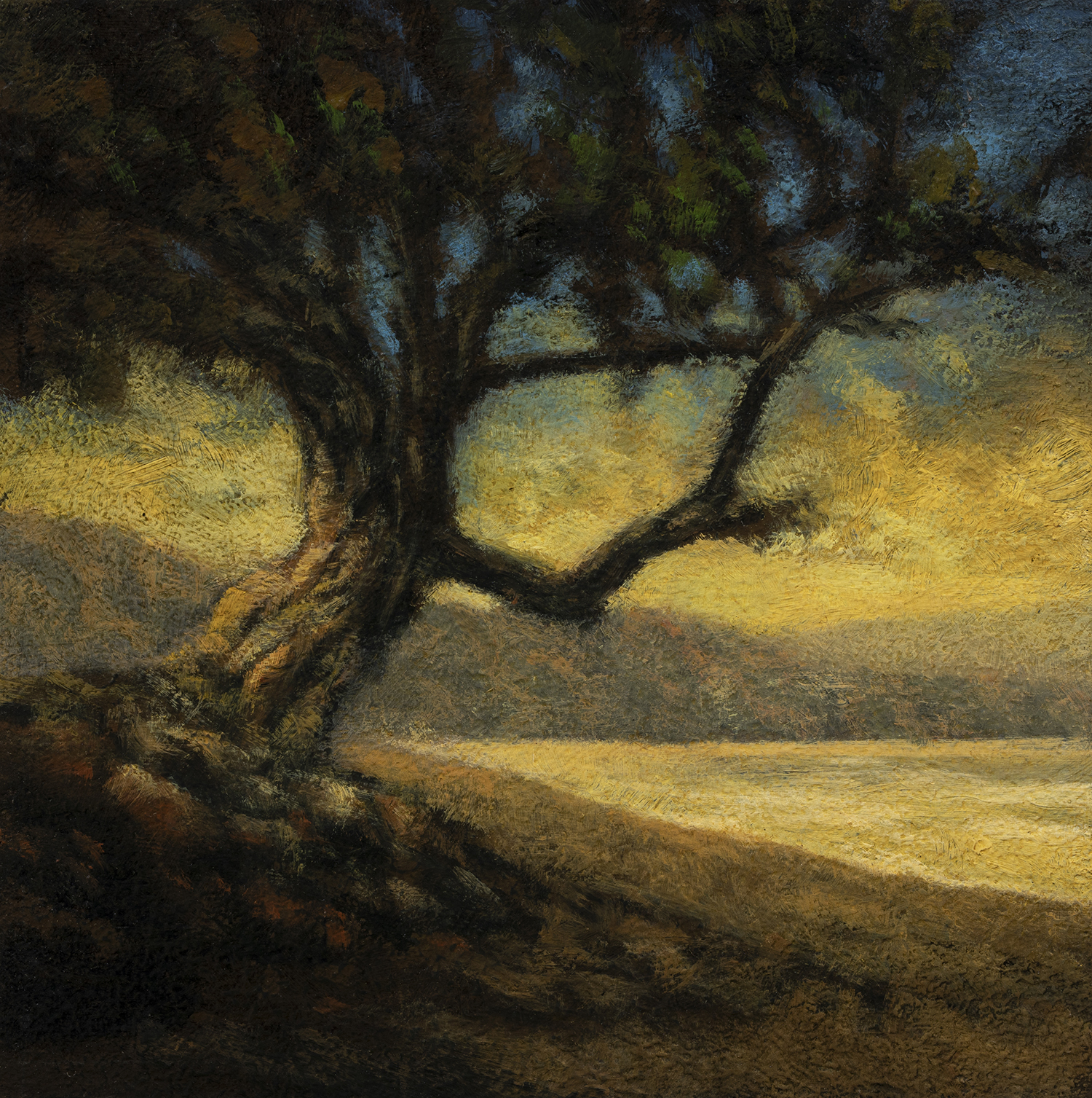 Tree by Bay by M Francis McCarthy - 5x5 Oil on Wood Panel