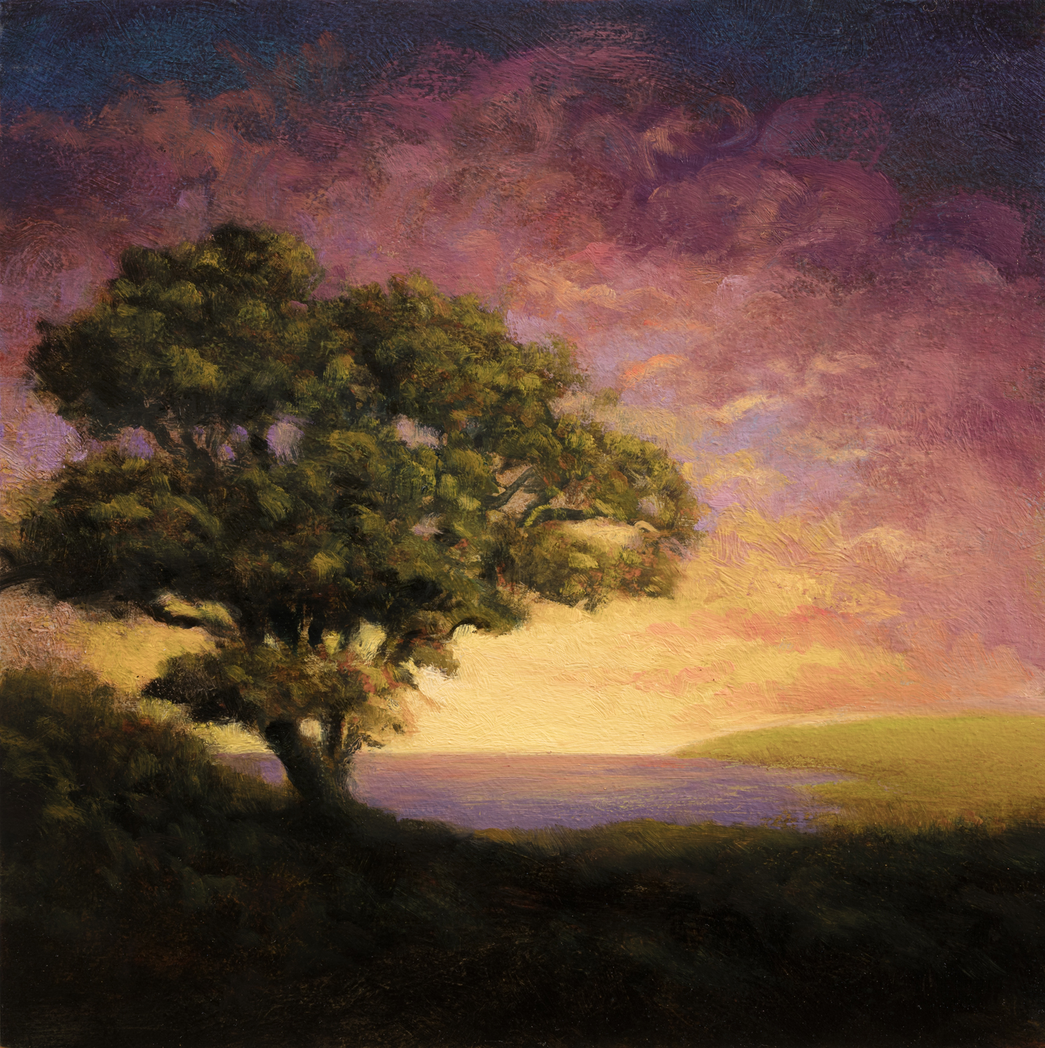 Afternoon Glow by M Francis McCarthy - 8x8 Oil on Wood Panel
