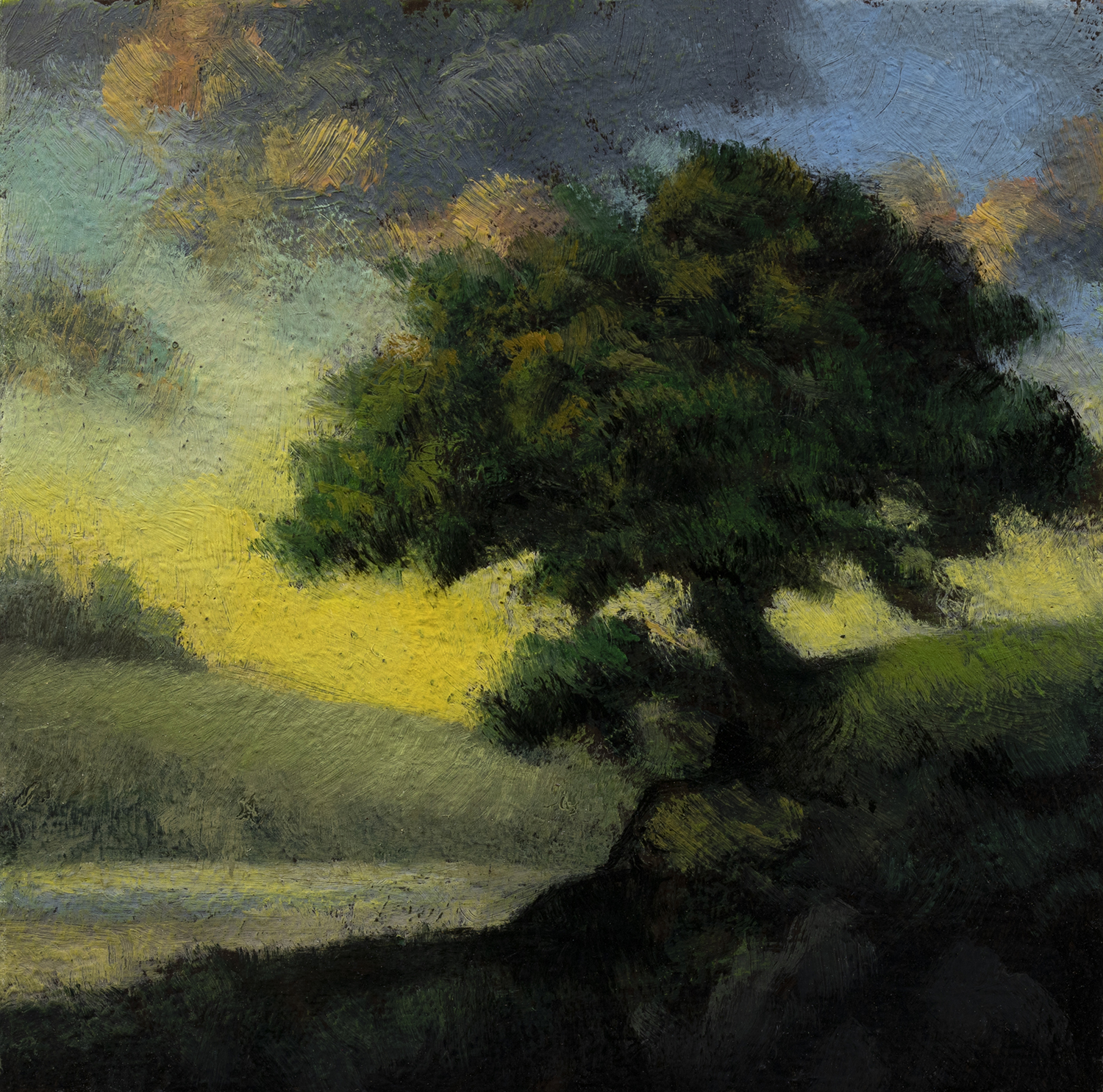 Tree over the Inlet by M Francis McCarthy - 3½x3½ Oil on Wood Panel