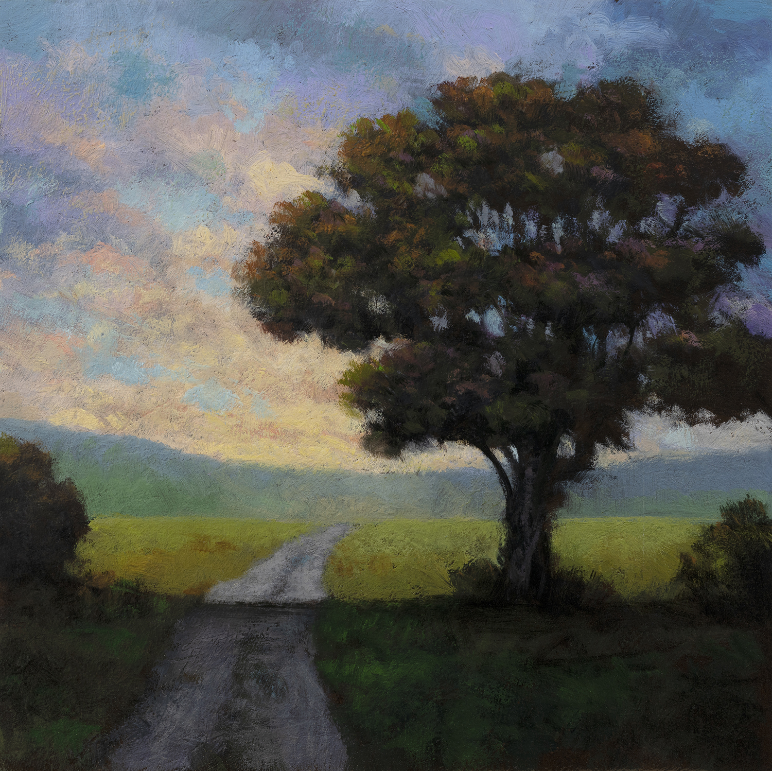 Into the Field by M Francis McCarthy - 8x8 Oil on Wood Panel