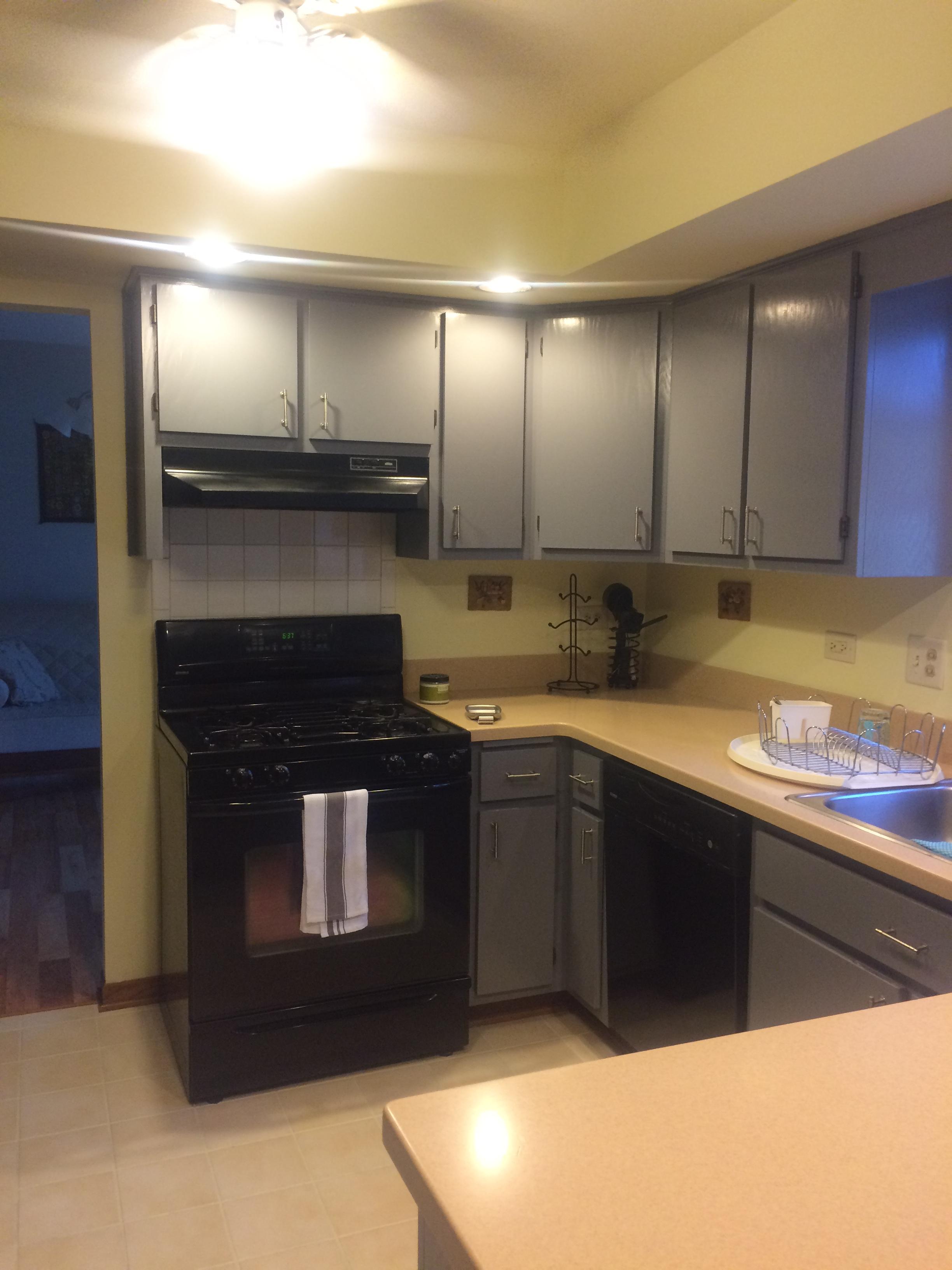 flossmoor kitchen 5 before.jpg