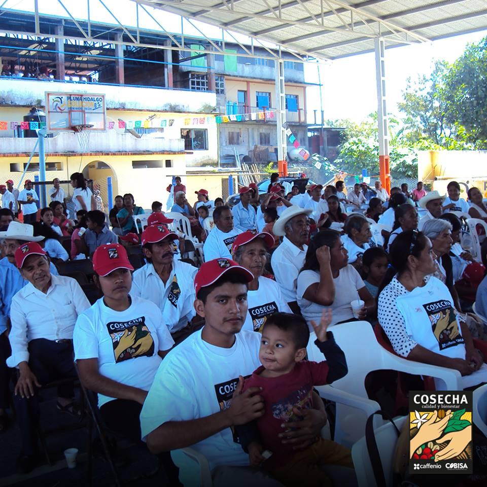 Oaxaca 5.jpg