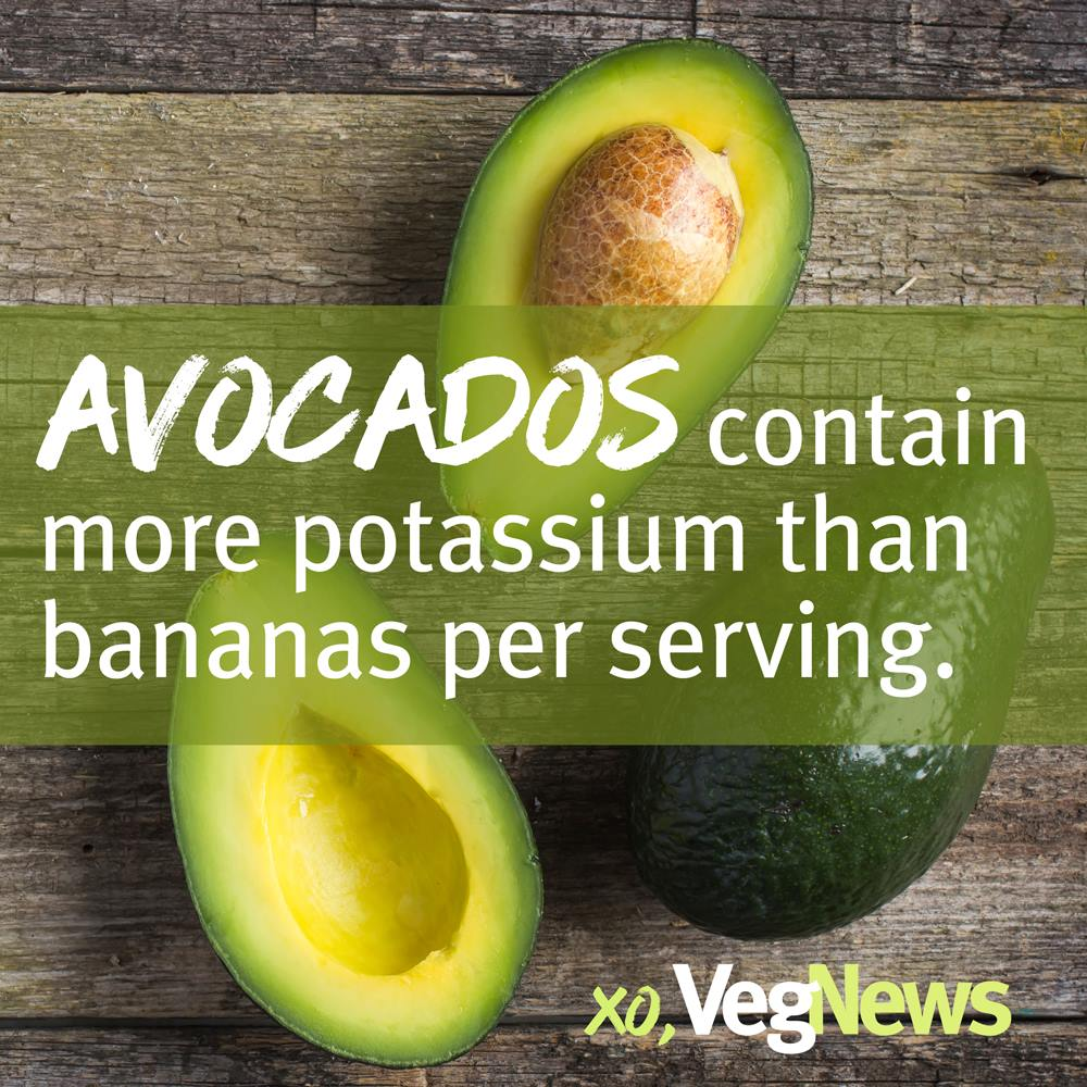 Natalie designed a series of vegan food facts for use on VegNews Magazine's social media networks.