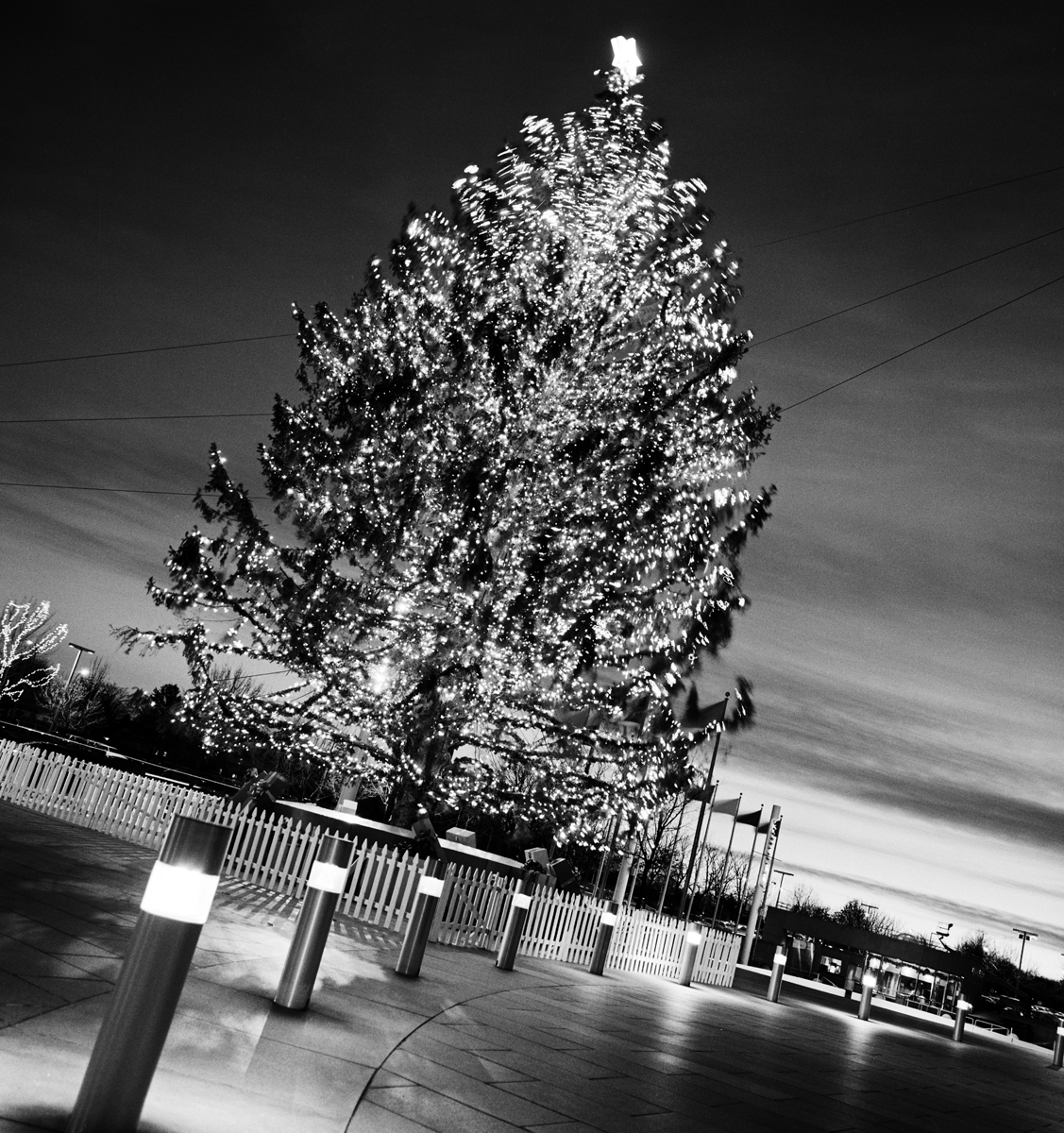 Eab Plaza tree 8 bit final.jpg